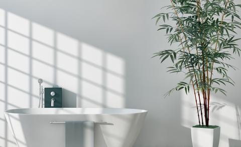 Trend: planten in de badkamer