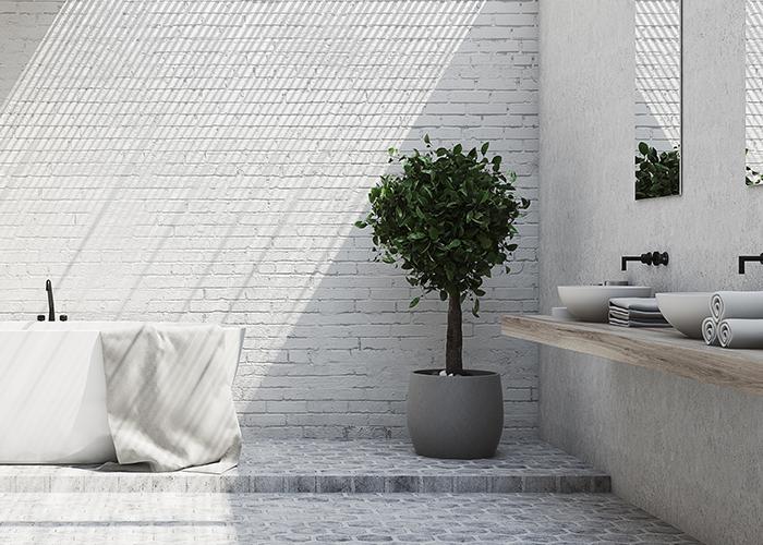 Planten in de badkamer: fris en natuurlijk - Inspiratie - Saniweb.nl